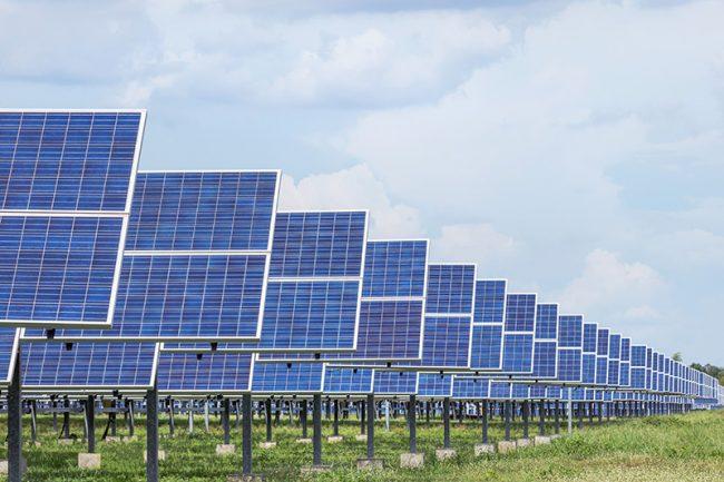 Nueva ley favorece la productividad y las metas de carbono neutralidad